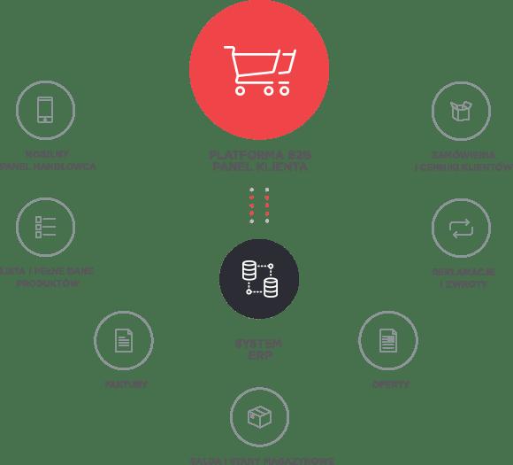 Systemy | i Platformy B2B